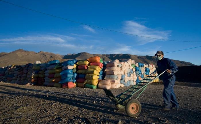 Economia indígena : el auge de laQuinua