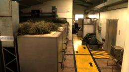 Planta de procesamiento de Jambi Kiwa en Riobamba. Todo el proceso de cultivo y transformación de la planta es natural. Los productos son elaborados sobre la base de recetas de medicina andina.